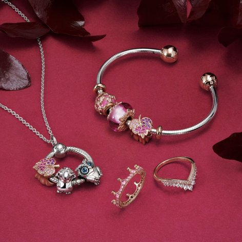 Show off your stories and the things you love with brand new nature-inspired charms finished in Pandora Rose.